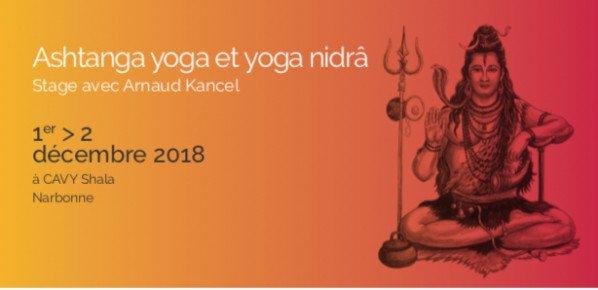 Stage d'Ashtanga Vinyasa yoga avec Arnaud Kancel les 1er et 2 Décembre 2018